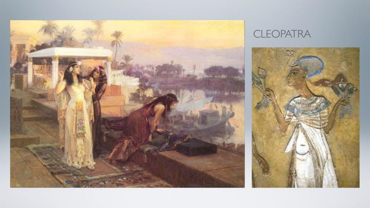 proj cleopatra.002